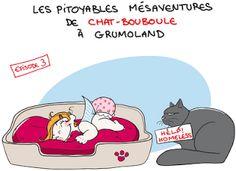 Les pitoyables mésaventures de Chatbouboule - Episode 3