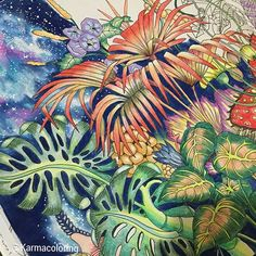 Page1 Details #tropical plants with Galaxy✨ still work in…
