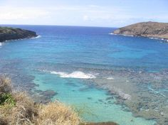 Hanauma Bay Reserve, catch the bus from Waikiki, go early to avoid the crowds, snorkelling!