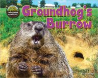 Groundhog's Burrow Mammals Children's Nonfiction Ebook by Dee Phillips Preschool Library, Preschool Lessons, Reading Counts, North American Animals, Summer Reading Program, Library Programs, Groundhog Day, Science Activities, Nonfiction
