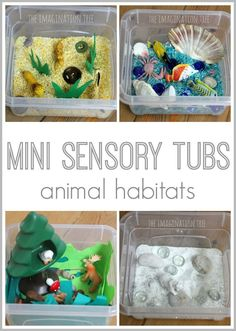 Mini Sensory Tubs - Animal habitats using colored rice and various small objects that suit that animal's habitat