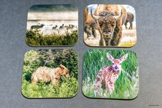 Most sold items - Wooden Wildlife coasters , set of 4, Bar, wood, gift for dad, Groomsmen Gift, Wedding Party Gifts, drinkware, home accents by PicturesFromHeaven on Etsy