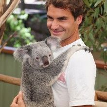 Roger Federer at Lone Pine Koala Sanctuary, Brisbane, 2014. Sooooooo Cute!!! By the Way if you are going to the Australian Tennis Open remember to support Roger!!!