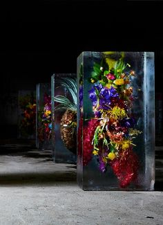 Beautiful flowers carefully frozen in cold water for display and preservation. Creative art installation by Japanese floral shop owner Azuma Makoto.