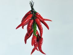 3 Ways To Dry Chilies -- with Pin-It-Button on wikiHow.com