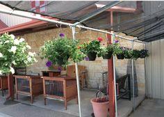It's a beautiful day to start gardening. Need hanging baskets? We've got em! #GardenParadise #Petunias #Geraniums