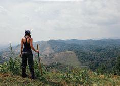 Where the rainforest meets the tea fields of Uganda. #uganda #africa