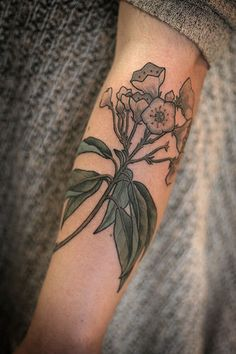 Mountain Laurel tattoo