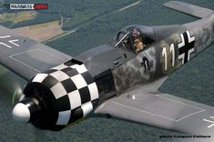 Ray Fowler flying over the skies of South Virginia  the formerly MAM's Fw -190. (Image credit Luigino Caliaro)