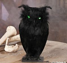 FEATHERED BLACK OWL GLOWING GREEN LIGHT UP EYES