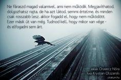 A hét idézete szeptember utolsó hetében Oravecz Nóra Facebook oldaláról.