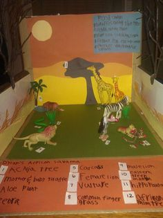Dylans first big school project an African Savanna shoebox habitat pinned with Pinvolve Science Activities, Science Projects, Educational Activities, School Projects, Projects For Kids, Savanna Biome, Giraffe Habitat, Ecosystems Projects, Elmer The Elephants