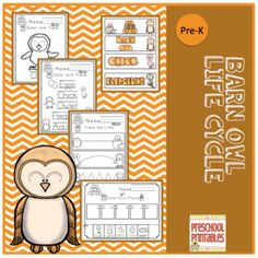 Barn+Owl+Life+Cycle+from+Preschool+Printables+on+TeachersNotebook.com+-++(28+pages)++-+Life+Cycle