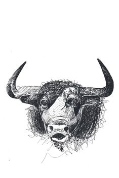 Poem: Ulli, the Young Bull Animal Illustrations, Moose Art, Poems, Friends, Animals, Beautiful Life, Poetry, Death, Nice Asses