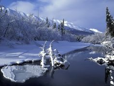 Spring Thaw Spring Thaw Pinterest Search and Spring