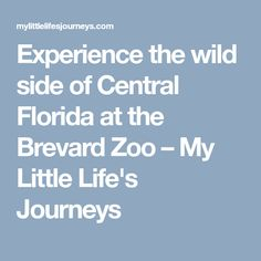 Experience the wild side of Central Florida at the Brevard Zoo – My Little Life's Journeys