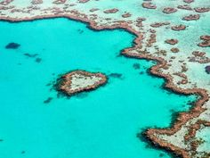 The Best Experiences At The Great Barrier Reef - Girl Tweets World