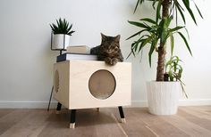 This modern cat bed / table named Nest, is made from high-end plywood, and as the design of the table is minimal, it can also double as a side table in any modern interior.