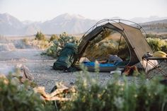camping, desert, and life image