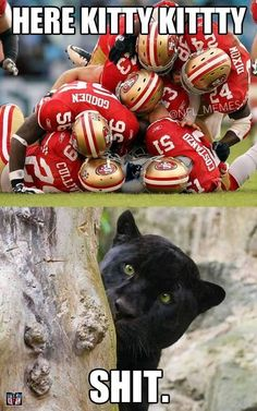 """""""How the Panthers feel right now. Nfl 49ers, Nfl Steelers, 49ers Fans, Nfl Football, 49ers Memes, Nfl Memes, Sports Memes, Funny Sports, Football Qoutes"""