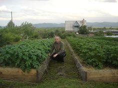 Záhrada Igora Ljadova - OZ Biosféra Swiss Cottage, Growing Vegetables, Rubrics, Permaculture, Vegetable Garden, Home And Garden, Outdoor Decor, Garden Ideas, Google