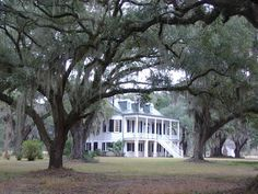 The Grove Plantation House is located near Adams Run, SC. It was built in 1828 and is one of only three antebellum mansions in the ACE Basin area to survive the Civil War. Former owners ensured it would be preserved by placing it on the National Register of Historical Places.