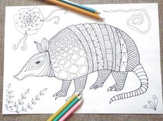 Coloring Pages Totem Animals : Sea turtle adult coloring page tortue honu kids instant