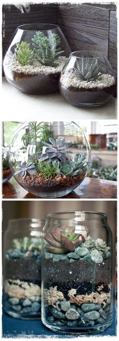 DIY Terrariums | DIY & Craft Ideas #handmadehomedecor