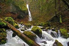Ponytail Falls, OR by Ulrich Burkhalter, via Flickr