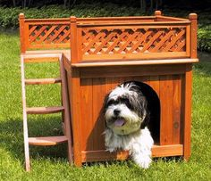 Wood Dog or Cat Home and Bed - or Cat Window Outlook Perch or Litter Box Cover