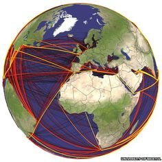 Scientists map global routes of ship-borne invasive species