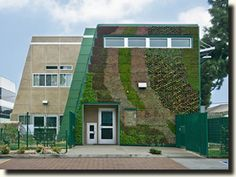 Little owl preschool...the colors are generated by succulents growing on the building