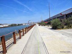15 Nantes / Le port/ Machines de l' île / anneaux de Buren - Le parc des chantiers ....... - 113118434504119207618 - Picasa Albums Web