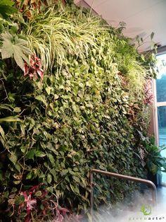 Zielona ściana w recepcji w centrum EdenGreen Spa - Greenarte® 2013