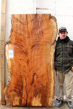 5630x1 Beech Slab Raw Wood Unfinished Custom Lumber Unique Furniture Rustic Wood Slab, Raw Wood, Wood Grain, Unique Furniture, Rustic Furniture, Iphone Stand, Wood Texture, Interior Doors, Rustic Charm