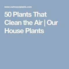 50 Plants That Clean the Air | Our House Plants