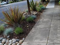 If there are no major HOA restrictions on landscaping your street strip, why not be creative? This design features a colorful, eye-pleasing mixture of river rocks, mulch and ornamental grasses and plants for maximum curb appeal.
