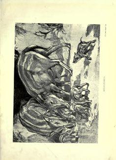 Evolution in the past  London :Herbert and Daniel,1912.  Biodiversitylibrary. Biodivlibrary. BHL. Biodiversity Heritage Library