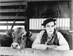 Buster Keaton busca por el bosque a su novia, que es una verdadera vaca  Rafael Alberti