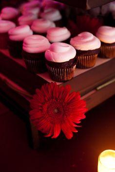 cupcakes, cupcakes, cupcakes!