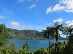 Blue Lake (Lake Tikitapu)