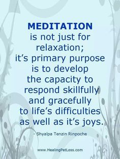 Meditation quote http://www.loapowers.net/what-else-is-preventing-you-from-success/