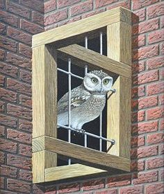 Optical illusion by Jos De Mey.    Hoekvensterkooi met doorgang voor wijze uilen
