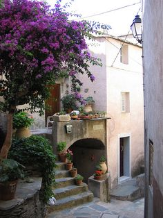 Street scene in the village of Nonza, Corsica, France (by Ocagnano).