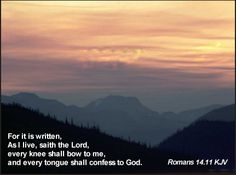 For it is written, As I live, saith the Lord, every knee shall bow to me, and every tongue shall confess to God. Romans 14:11