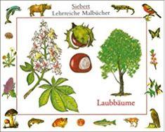 Laubbäume: Malbuch (Siebert Lehrreiche Malbücher)