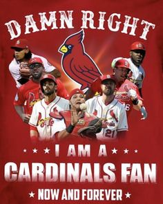 St Louis Cardinals, Now And Forever, Saints, Movie Posters, Movies, Films, Film Poster, Cinema, Movie