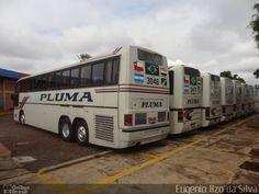 Pluma Conforto e Turismo 3046 por Eugênio Ilzo da Silva