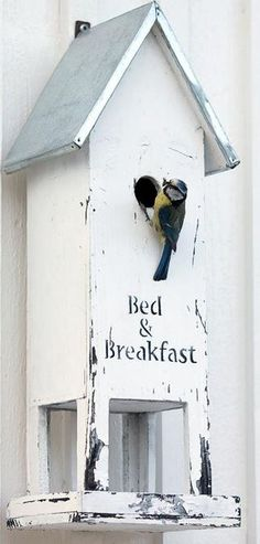 A bird box with a sense of humour ....... Come on in....breakfast is served.