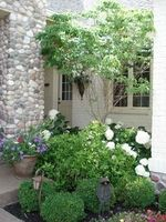 Aspen Outdoor Designs, Inc - Landscape Design, Installation & Maintenance - Noblesville, Indiana - Planting Design